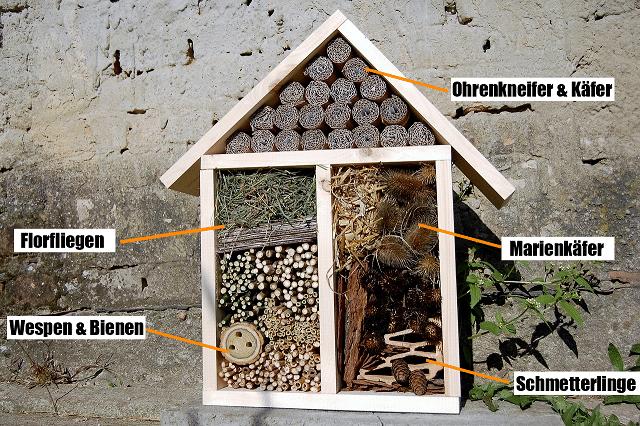 Arten im Insektenhotel. Wenn ihr ein Insektenhotel selber baut, müsst ihr die verschiedenen Abteilungen beachten.