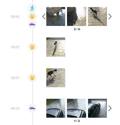 Die Netatmo Presence erkennt im Test zuverlässig, ob es sich um Menschen, Tiere oder Fahrzeuge handelt.